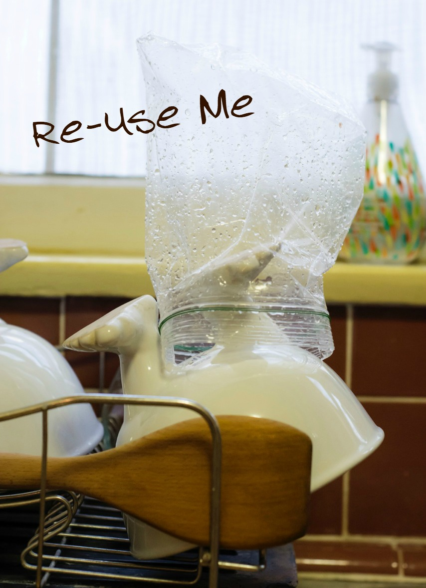 re-use plastic bags